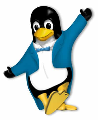 Data Recovery Problems in the Linux and Unix Environment