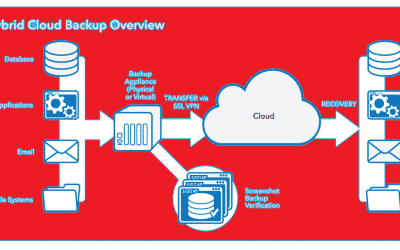 4 Reasons Hybrid Cloud Server Backup is Needed for Business
