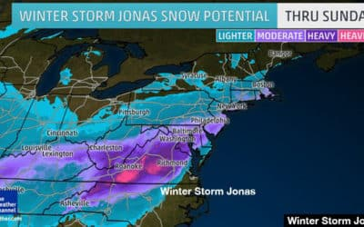 Prepare your Business. Winter Storm Jonas is on his way.
