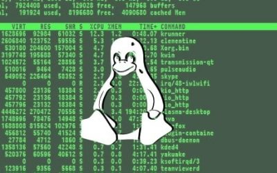 It's Happening: Linux Ransomware Attacks on the Rise